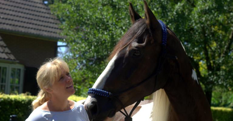 Pluto en Katrien begeleiden met paarden