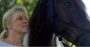 paardencoaching ptss trauma