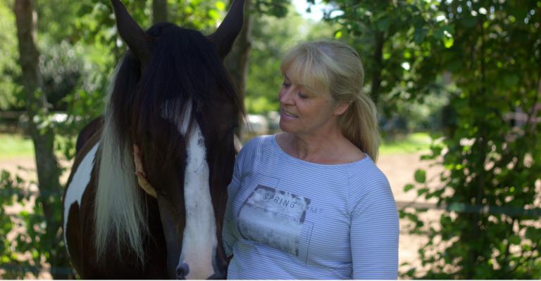 systemisch begeleiden met paarden